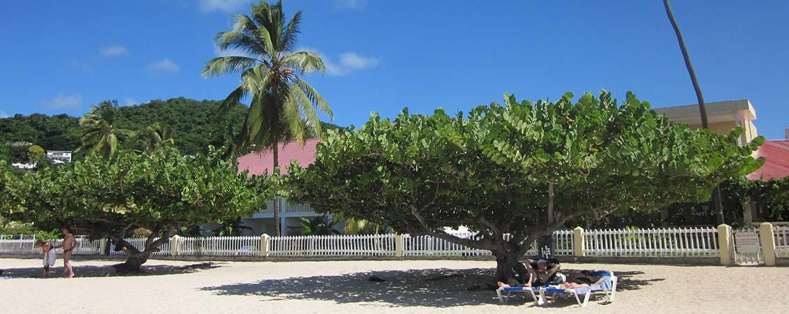 banner_karibik_grenada_grand_beach_strand_hotel