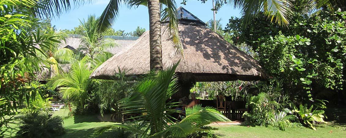 banner_philippinen_cebu_moalboal_ravenala_resort_tropisch