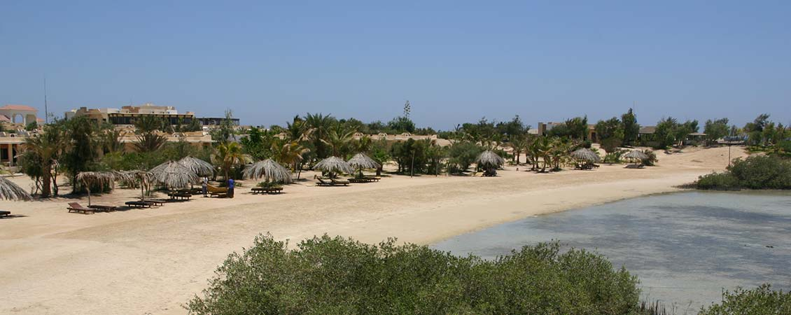 banner_rotes_meer_aegypten_el_qusier_mangrove_bay