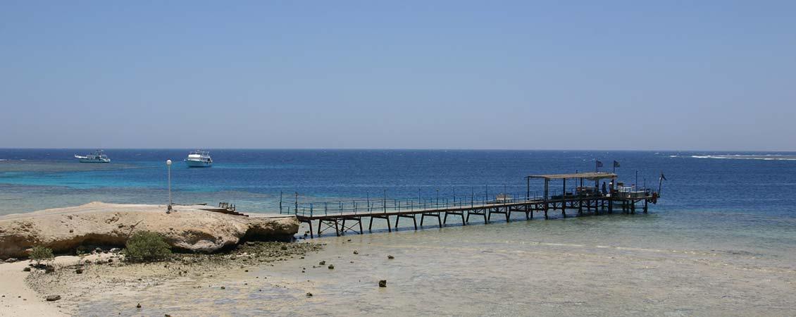banner_rotes_meer_aegypten_el_qusier_mangrove_bay_hausriff