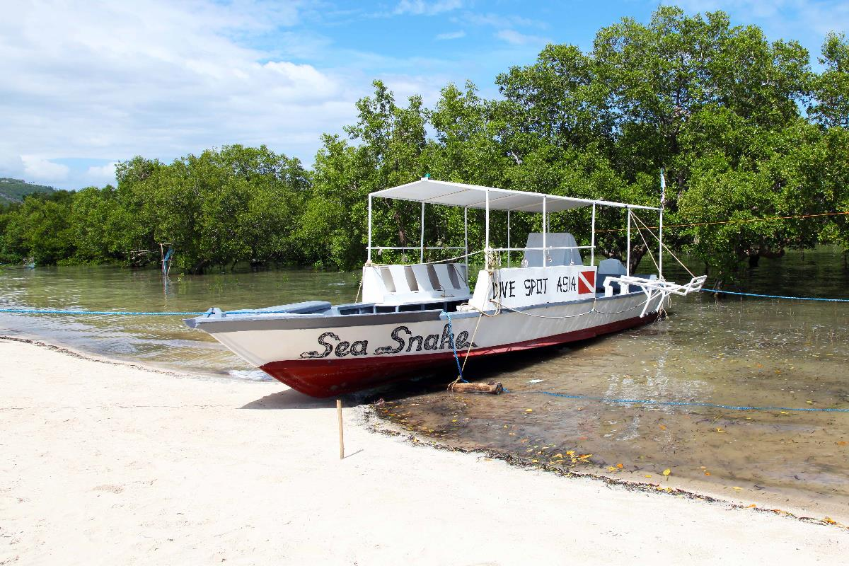 philippinen_cebu_alcoy_mangrove_eco_resort_strand1