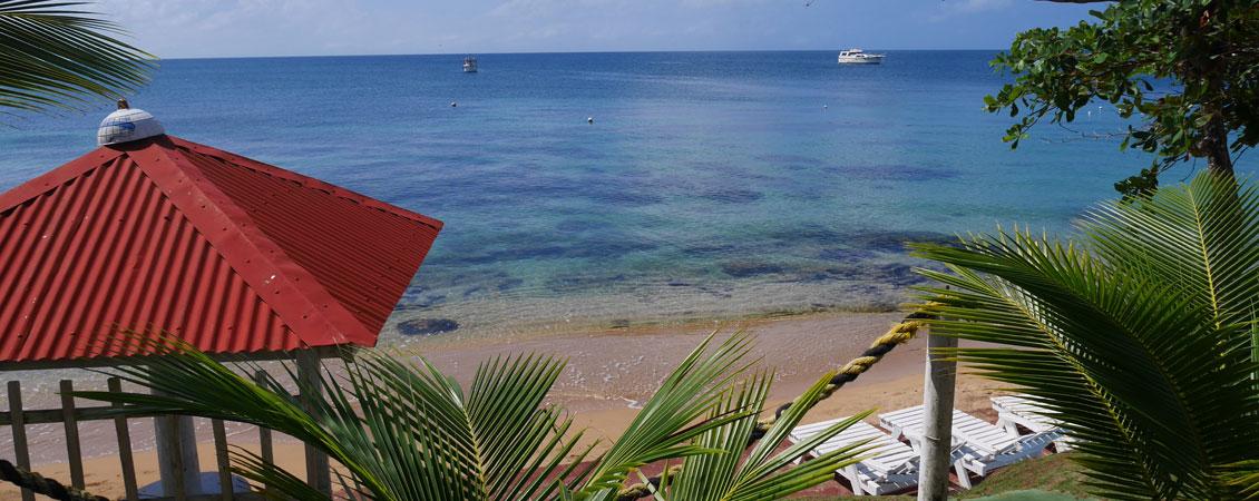 banner_karibik_nicaragua_little_corn_los_delfines_dolphin_beach
