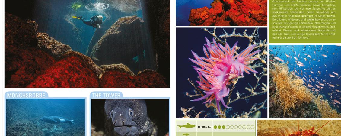 banner_nautilus_katalog