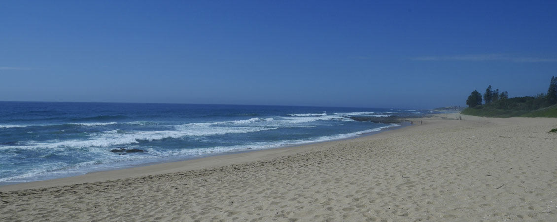 banner_suedafrika_shelly_beach_protea_banks_tropical_beach