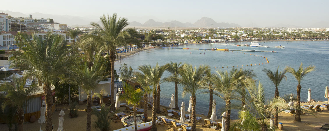 banner_rotes_meer_aegypten_sharrm_el_sheikh_lido_hotel_naama_bay
