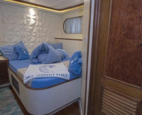 Sea Serpent Grand - Double Bed Lower Deck