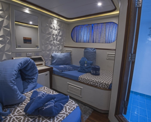 Sea Serpent Grand - Twin Bed Lower Deck