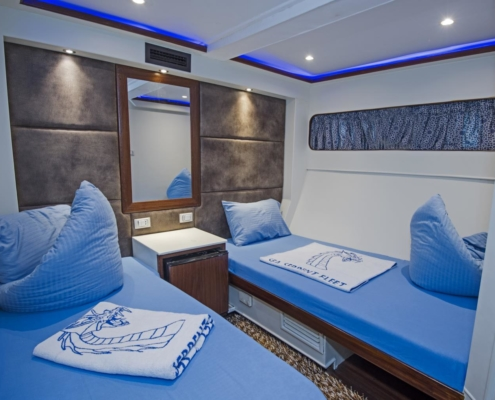 Sea Serpent - Lower Deck Twin Cabin